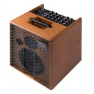 Acus One Forstrings 6 Wood 130 Watt Acoustic Amplifier