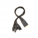 Planet Waves DB25 XLR Male Female Break Out Cable