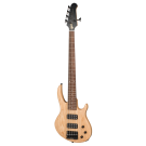 Gibson EB Bass 5 String 2018 in Natural Satin
