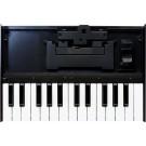 Roland K-25m Keyboard Unit For Roland Boutique