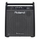 Roland PM200 - High-Resolution Drum Monitor