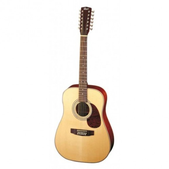Earth 70 12Q 12 String Acoustic Electric