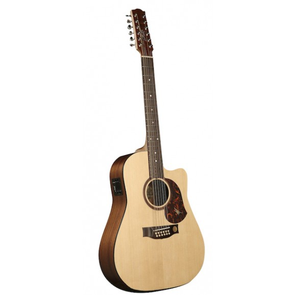 SRS70C 12 String Acoustic Electric + Deluxe Hard Case