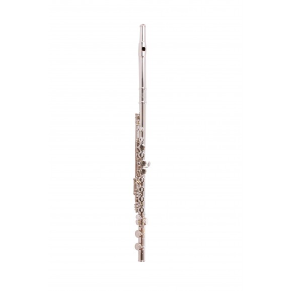Flute Silver Plated Head Closed Hole In French Style Case And Cover