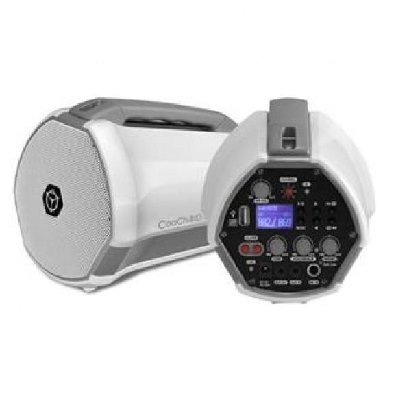 Chiayo Coach 40 watt Basic Mini PA