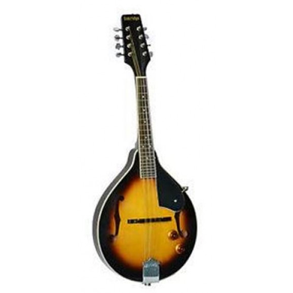 TM40E Model Mandolin Tobacco Sunburst