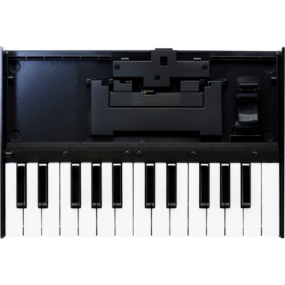 K-25m Keyboard Unit For Roland Boutique