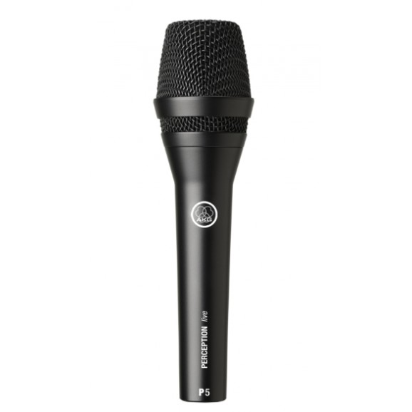 P5 Dynamic Supercardioid Microphone