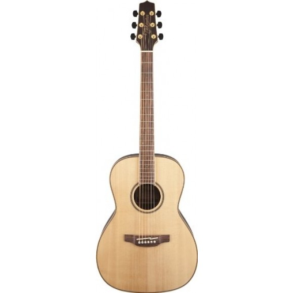 New Yorker Acoustic / Electric Guitar