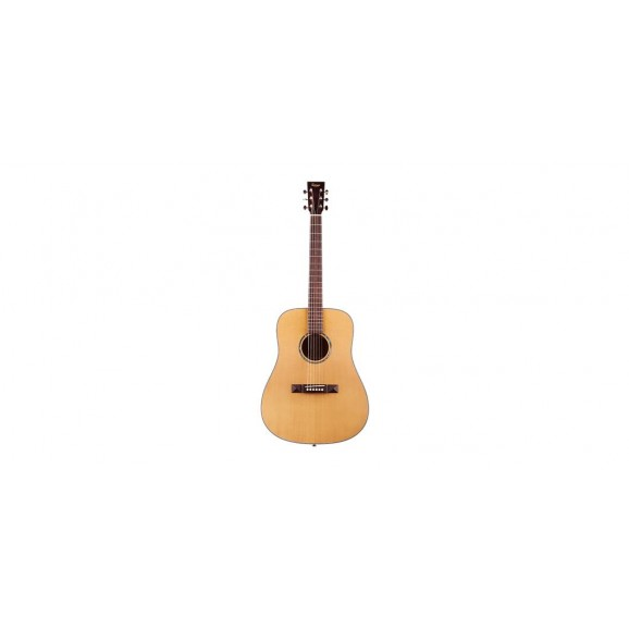 Tasman TA100 Dreadnought Acoustic Guitar with Case
