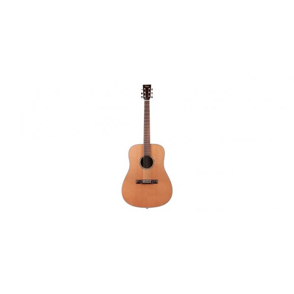 Tasman TA200-E Dreadnought Acoustic Electric with Case