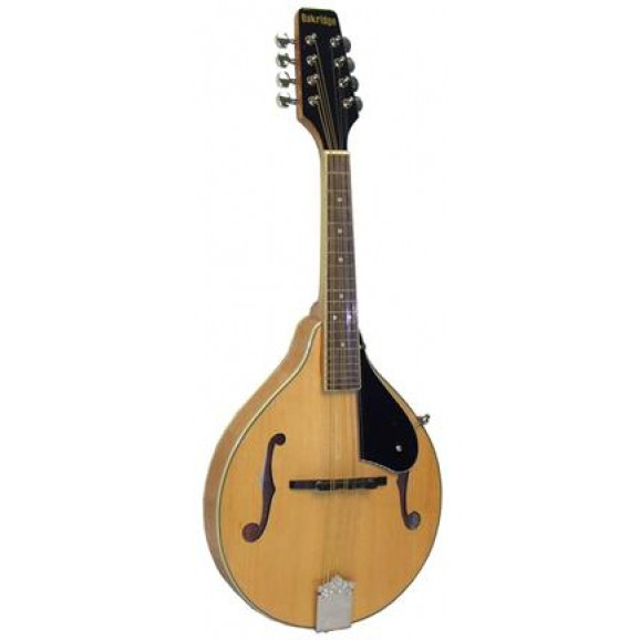 TM40 Mandolin